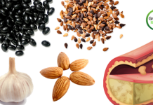 6-foods-that-lower-cholesterol