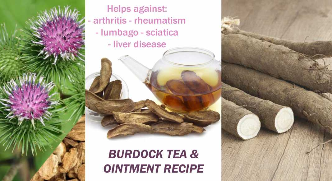 Remove Toxins from Your Body with Burdock Tea & Treat Wounds, Burns